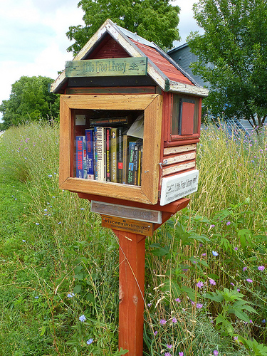 You can build your own little library or order one already built from the Little Free Library website.
